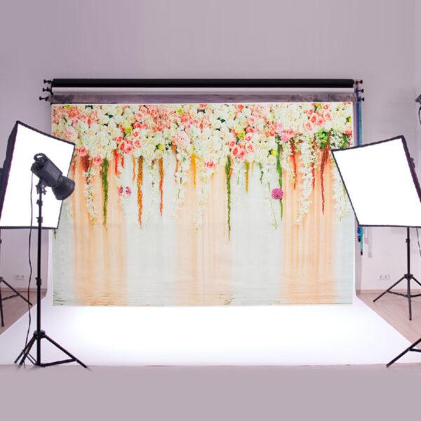backdrop photography background